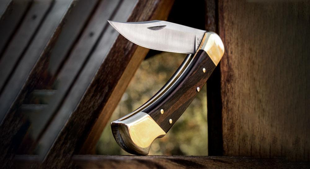 Buck 110 Famous Folding Hunter Knife