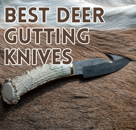 best-deer-gutting-knife