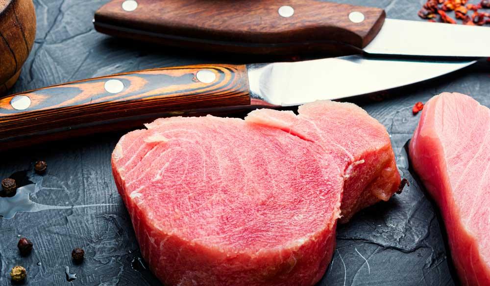 Best fillet knives for tuna